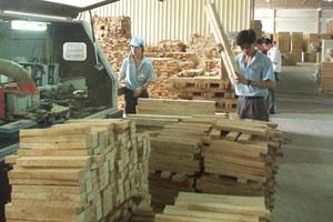 Đồ gỗ Việt Nam vào Mỹ không `vướng` luật Lacey