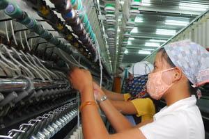 ADB: Việt Nam trên đà đạt tốc độ tăng trưởng 6,5%