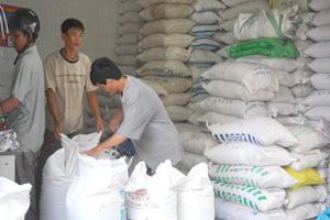 Thị trường lương thực trong nước ổn định