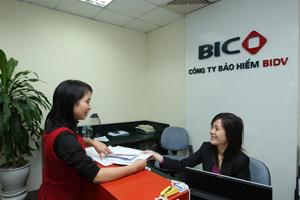 BIC triển khai bảo hiểm tín dụng thương mại