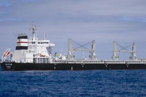Công ty Đóng tàu Phà Rừng đặt ky tàu chở hàng 34.000DWT