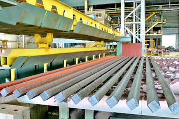 BVG: Tài chính Điện Lực đăng ký giao dịch 900 nghìn cổ phiếu
