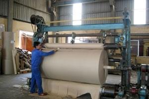 Doanh nghiệp giấy chuẩn bị tăng giá bán lên 9-14%