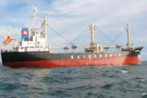 Một công ty vận tải biển đã dự kiến 'lỗ' trong năm 2011