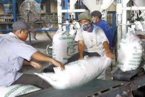 Chính sách lúa gạo Việt Nam được đề cao tại Thái