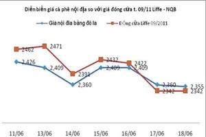 Giá cà phê: Nông dân mất 1,5 triệu đồng/tấn trong 1 tuần