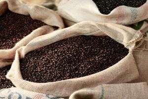 Phân tích cung cầu thị trường cà phê