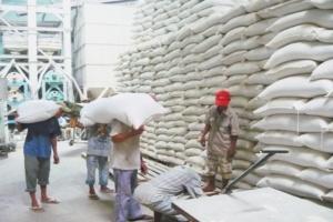 Năm 2011, có thể xuất khẩu 7 triệu tấn gạo