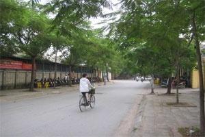 Hà Nội: Chỉnh quy hoạch khu đất tại đường Ngụy Như Kon Tum