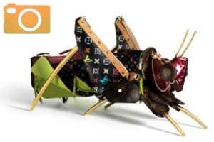 Những con thú ngộ nghĩnh từ... túi Louis Vuitton