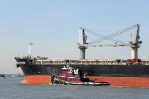 Những nghịch lý trong vụ đắm tàu Vinalines Queen