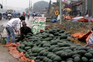 Hoa quả vỉa hè Hà Nội: Mập mờ xuất xứ, giá rẻ
