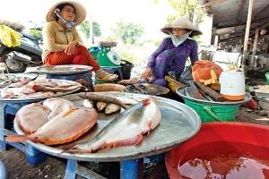 Người đi chợ chọn mua thức ăn: giá rẻ, số lượng ít