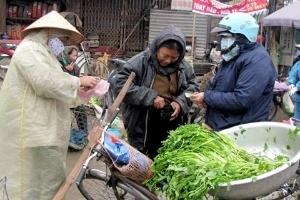 Từ gà Đức tới rau Việt Nam