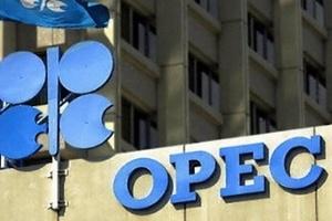 OPEC nâng dự báo tiêu thụ dầu mỏ thế giới năm nay