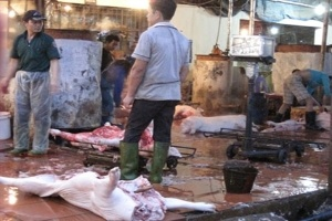 Cuộc chiến thịt thối, rau bẩn: Người tiêu dùng luôn... thua