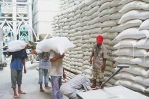 Kiến nghị thu mua tạm trữ 1 triệu tấn gạo