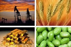 Lo ngại hạn hán, giá lương thực thế giới tiếp tục tăng cao