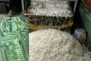 Sản xuất giá ăn bằng hóa chất