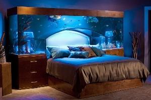Tủ đầu giường kết hợp bể cá