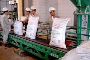 Năm 2013 dự kiến sản xuất 1,5 triệu tấn đường