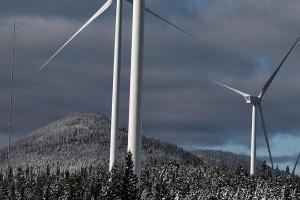 Mỹ áp thuế chống phá giá lên trụ điện gió Việt Nam