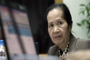 'Chết vì bất động sản, nhiều lắm không chỉ Mai Linh'