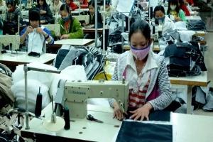 Năm 2013 ngành dệt may phấn đấu tăng trưởng trên 10%