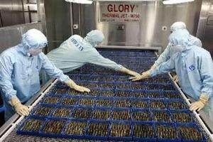 Việt Nam phản đối Mỹ vụ kiện chống phá giá tôm