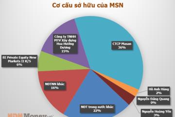 Ai sở hữu nhiều cổ phiếu MSN nhất?