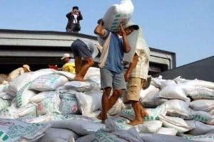 Phân bón nhập khẩu tăng mạnh