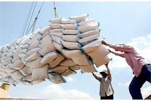 Xuất khẩu gạo sang thị trường Ghana được dự báo tăng mạnh