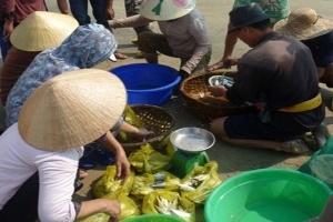 Ngư dân Đà Nẵng trúng cá