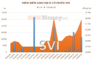 SVI đặt mục tiêu 75 tỷ đồng lợi nhuận năm 2013
