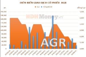 AGR: Lợi nhuận quý 1/2013 giảm 70% so với cùng kỳ