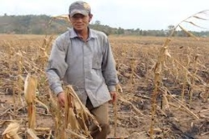 1 tháng có thêm 13,6 nghìn hộ thiếu đói