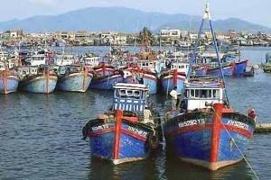 Nghề khai thác hải sản đạt kết quả khả quan