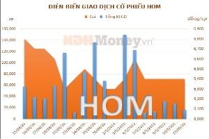 HOM lỗ trong quý 1/2013 do giá nhiên liệu tăng cao