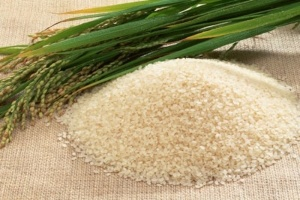Gia tăng giá trị cho gạo Việt Nam