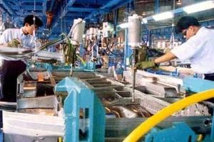 TP.HCM: 9.300 doanh nghiệp thành lập mới