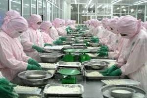 DN muốn tự công bố chất lượng cá basa xuất khẩu