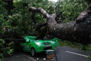 7 kinh nghiệm khi lái xe trời mưa bão