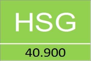 HSG đăng ký mua 2 triệu cổ phiếu quỹ