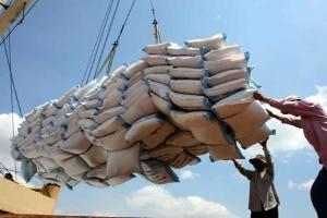 Giá gạo tăng nhờ chương trình tạm trữ
