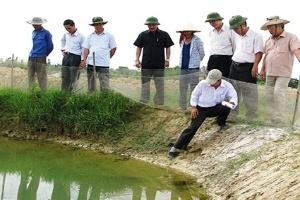Quảng Trị: Nông dân điêu đứng vì dịch bệnh tôm nuôi