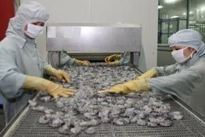 Thái Lan xem xét việc nhập khẩu tôm từ Việt Nam
