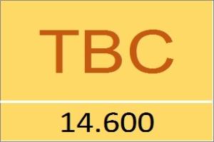 TBC: Tài chính điện lực chưa thoái hết vốn