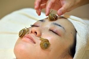 Chăm sóc da mặt bằng ốc sên sống