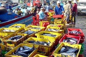 Sản lượng thủy sản khai thác tiếp tục tăng