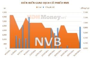 NVB: Quý II/2013 lỗ 11,31 tỷ đồng